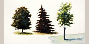 رنگ آمیزی درخت با آبرنگ