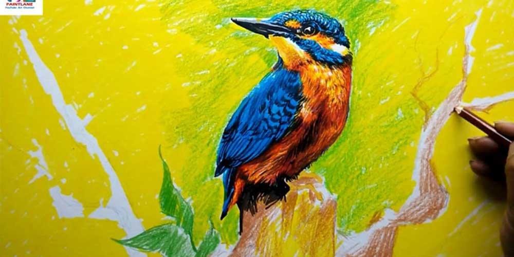آموزش نقاشی پرنده زیبا با مدادرنگی و ماژیک