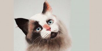 نقاشی چهره گربه با پاستل