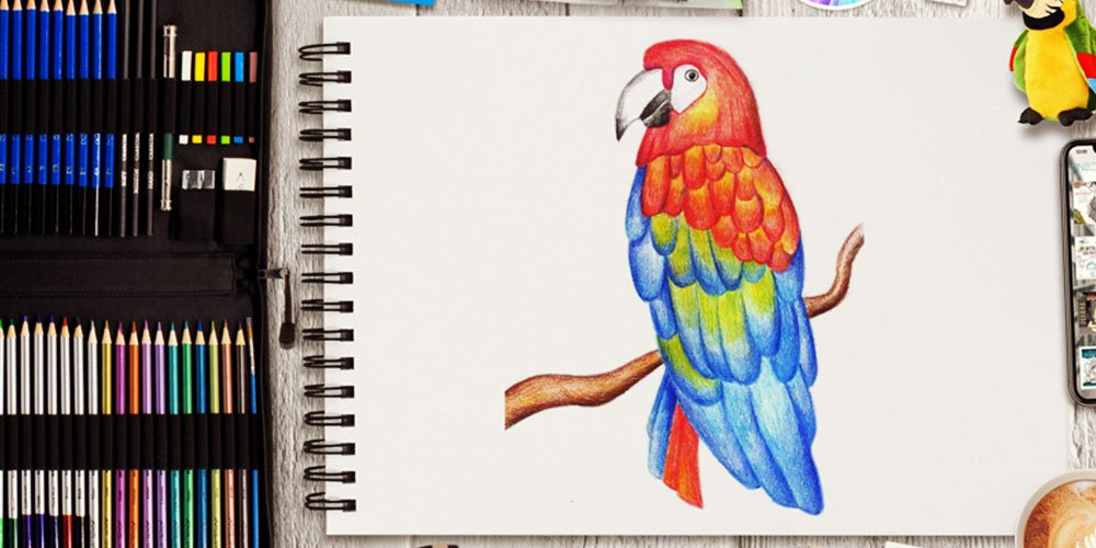 نقاشی طوطی