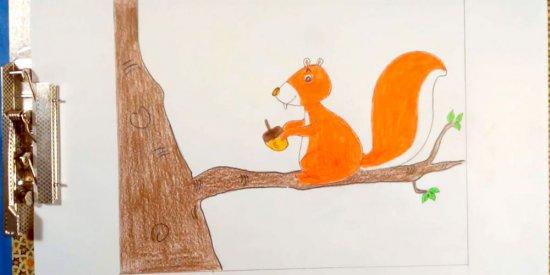 آموزش نقاشی سنجاب برای کودکان