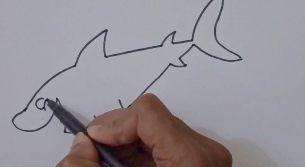 آموزش نقاشی کوسه برای کودکان