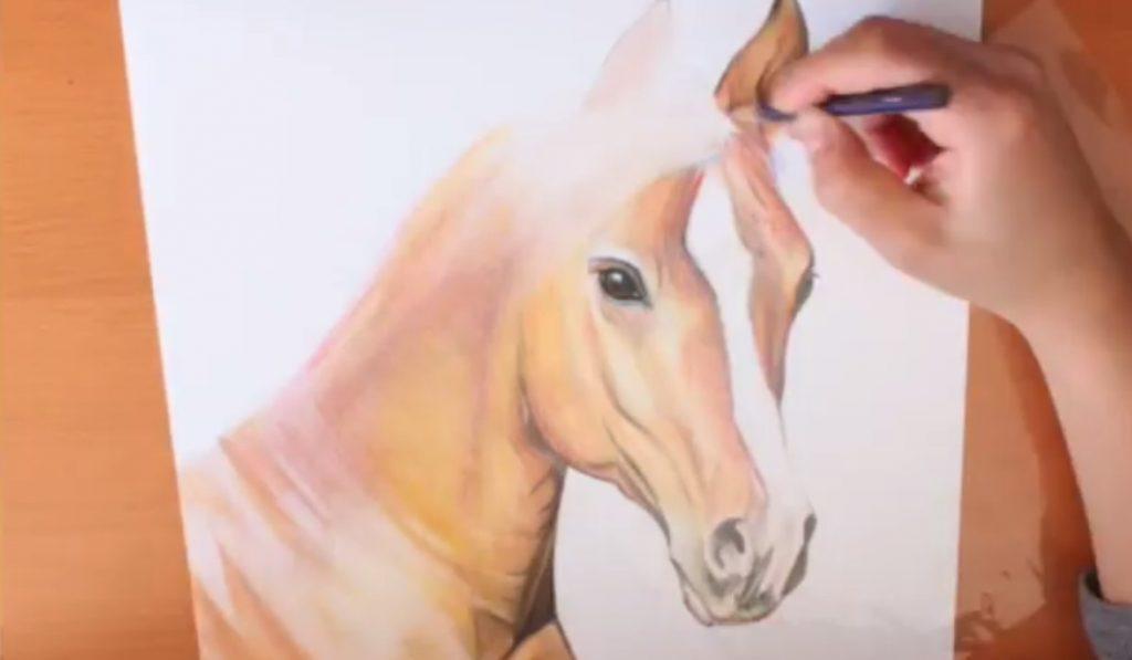 آموزش نقاشی سر اسب با مداد رنگی