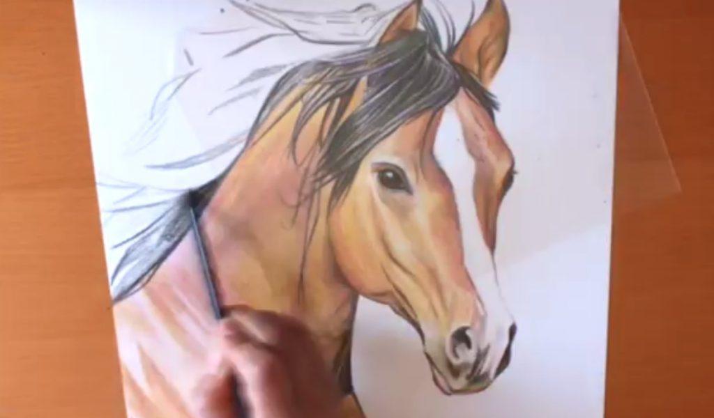 نقاشی سر اسب