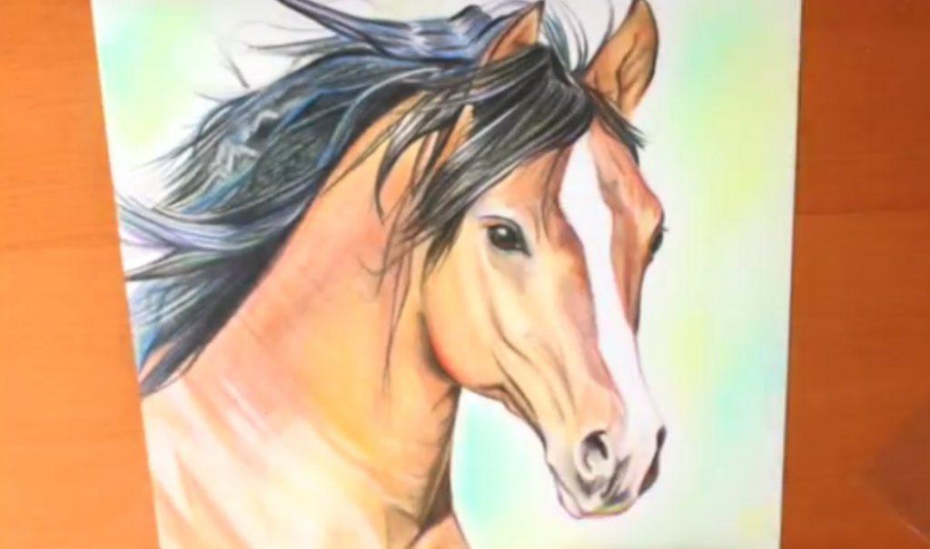 نقاشی سر اسب با مداد رنگی