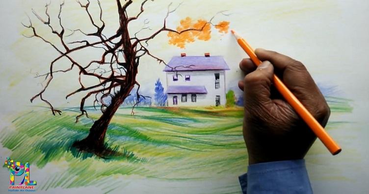 نحوه نقاشی با مداد رنگی برای مبتدیها - گام به گام