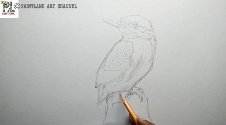 آموزش نقاشی پرنده زیبا با مدادرنگی