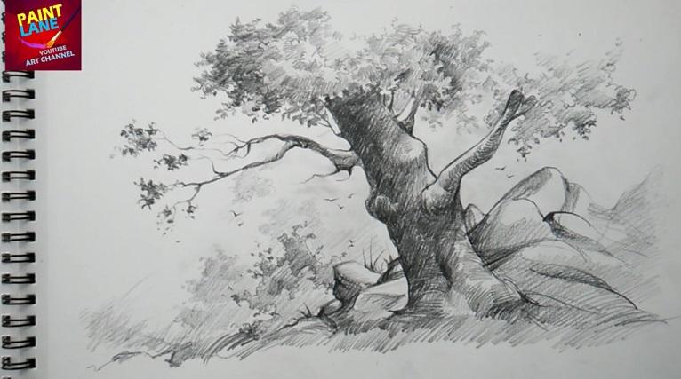 آموزش طراحی درخت با مداد